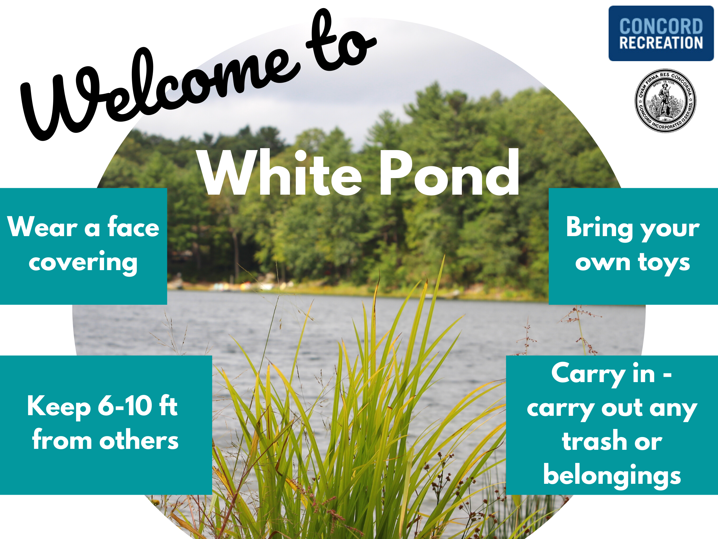 Welcome to White Pond